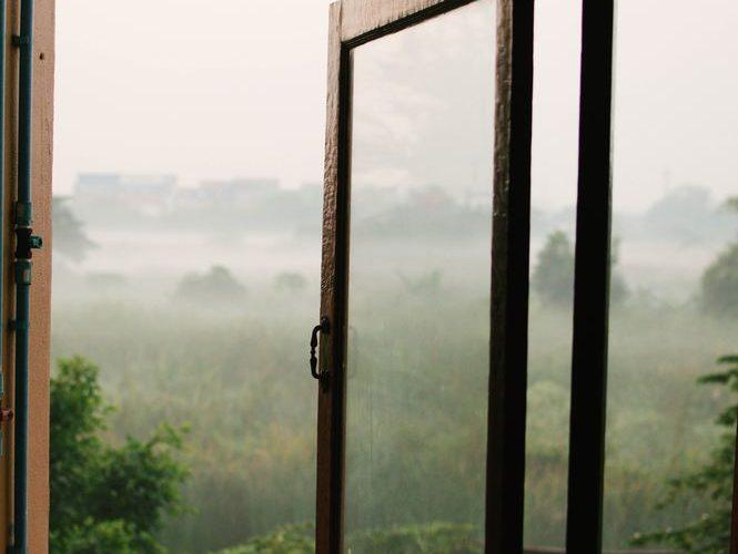 Ett fönster mot gården